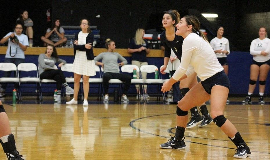 Photo for Volleyball drops two on day one of Liz Lykowski Memorial